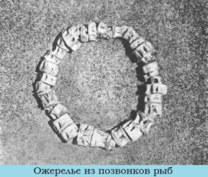 ожерелье_из_рыбьих_позванков_ozherele_iz_rybnyh_pozvankov
